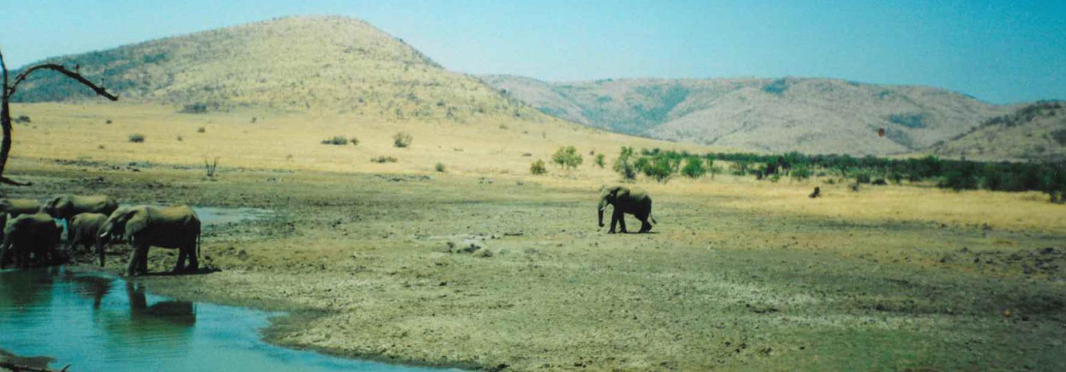 Africa_828-
